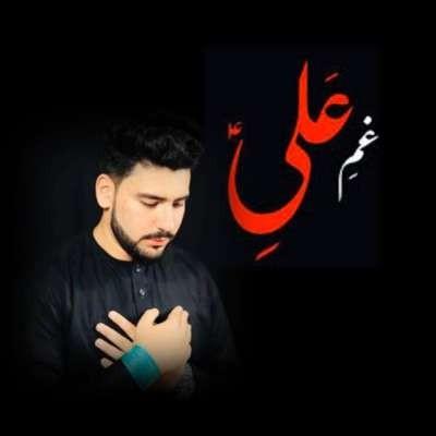 Mehdi Raza